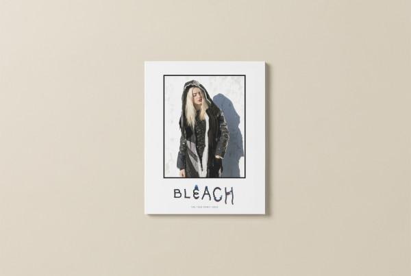 Bleach_Preview_1 copy