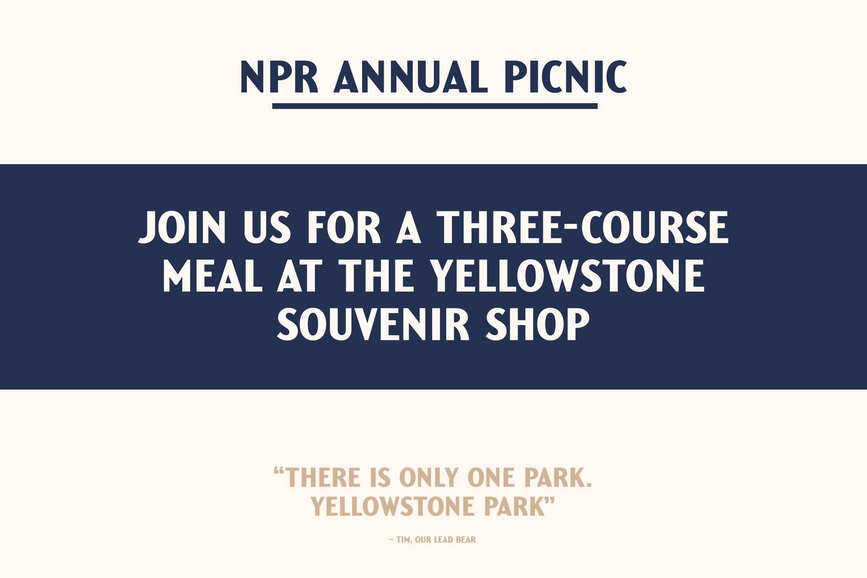 yellowstone-picnic